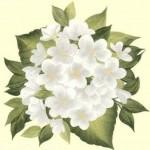 beyaz çiçek desenli dekupaj deseni
