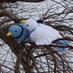 beyaz mavi aşık örgü kuş modelleri