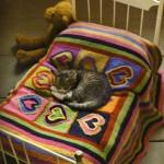 rengarenk kalp desenli örgü bebek battaniyesi örneği