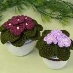 saksıda renkli menekşe örgü çiçek modelleri