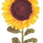sevimli örgü ayçiçeği modeli